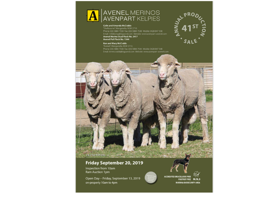 Avenel Merinos & Avenpart Kelpies 2019 Catalogue